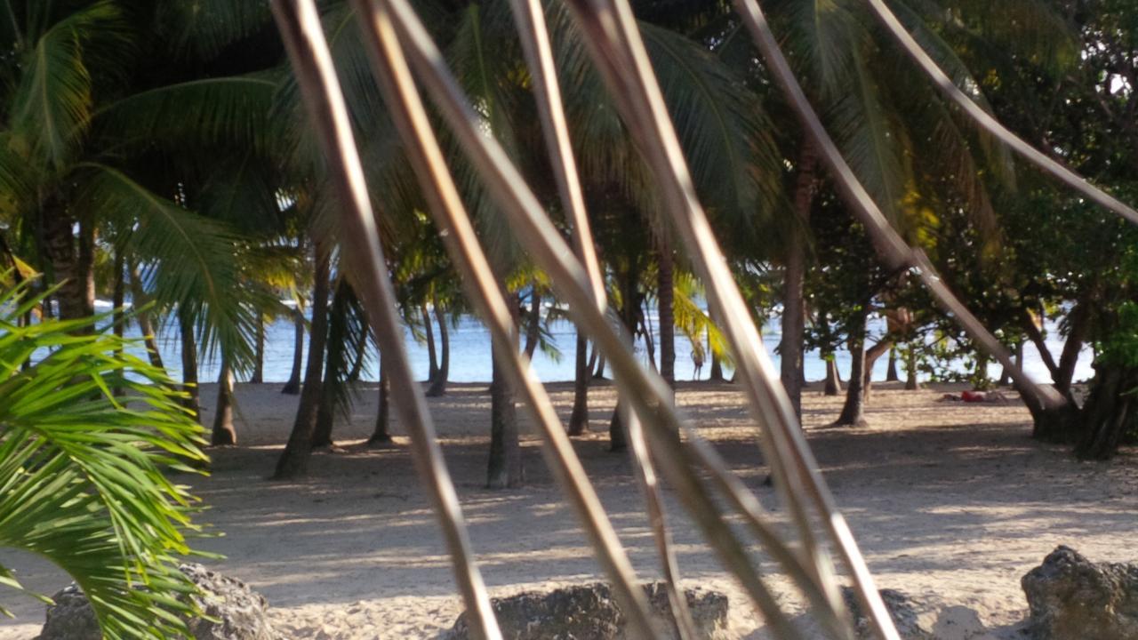 plage de bois jolan Ste Anne